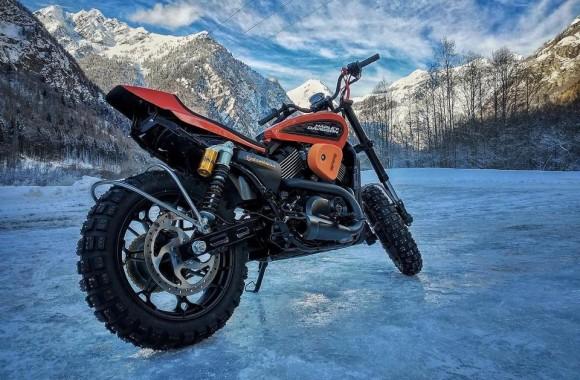 Snow Quake Harley
